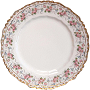 Antique Jean Pouyat French Limoges Porcelain Lunch Plate