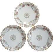Set Of Three Antique French Haviland Limoges Plates