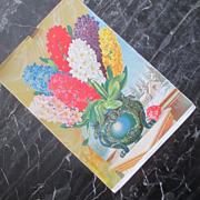 Original Victorian Lithograph Seed Catalog Pom Pon Hyacinths
