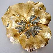Large Pave Crown Trifari Pansy