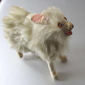"Cutest 2"" Pomeranian For Dollhouse"