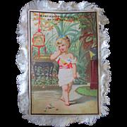 19C French Silk Fringed Birthday Card Darling Girl Parrots