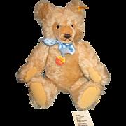 Steiff Original Growler Teddy Bear with Blue Bow #0201/41 Mohair West Germany