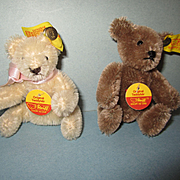 Steiff Teddy Bears with Buttons and Tags
