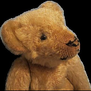 """Antique Steiff 12"""" Mohair Teddy Bear"""