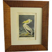 "First Octavo Edition Audubon Hand Colored Lithograph of ""The American White Pelican"""