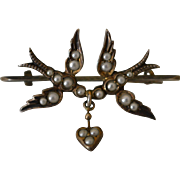 Antique Edwardian Love Bird Pin with Vermeil and Seed Pearls