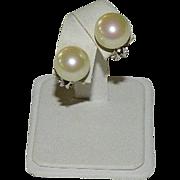 Christian Dior Faux Pearl Omega Back Clip Earrings