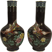 Pair Of Chinese Floral And Avian Cloisonne Vases