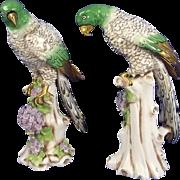 Pair Of 19th Century Samson & Co Porcelain Models Of Parrots