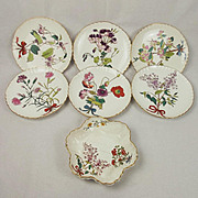 19th Century Minton Pottery Botanical Dessert Service