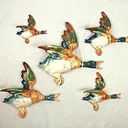 Complete Set Of Five Beswick 596 Flying Mallard Duck Wall Plaques