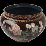 Circa 1900 Japanese Cloisonne Enamel Jardiniere
