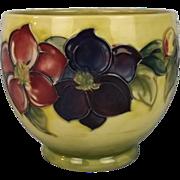 Moorcroft Clematis Pattern Bowl