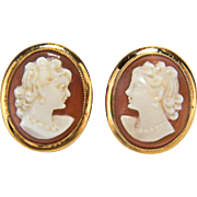 Vintage Shell Carved Cameo Signed BDA (Budlong Docherty and Armstrong) 10K Yellow Gold Screw Back Earrings