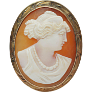 Conch Shell Cameo Brooch in 10k Yellow Gold
