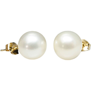 Cultured Pearl Stud Earrings in 14k Yellow Gold