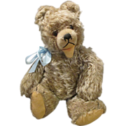 Sweet Stiff Teddy Bear Seeking New Den