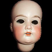 Antique Bisque Doll Head
