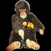 Steiff Jocco Monkey - Red Tag Sale Item