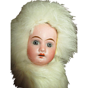 Antique Bisque Head Doll Marked 185 in Bunny Fur