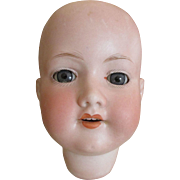 Antique German Bisque Doll Head with Pretty Face