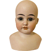 Stunning Antique Bisque Shoulder Doll Head