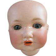 Antique Bisque Doll Head - Baby or Toddler - AM 971