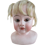 Belton Type Antique Bisque Doll Head