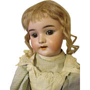Darling Antique Handwerck 109 Bisque Head Doll