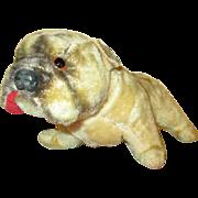 Antique Mohair Bulldog For Your Doll's Companion