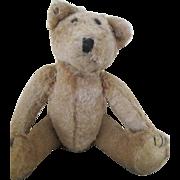 Darling Antique Teddy Bear Seeks New Home