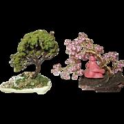 Gorgeous Miniature Bonsai Trees for Your Doll House
