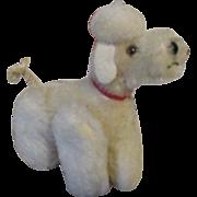 Vintage Steiff Snobby Poodle Snobby