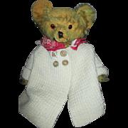 Loved Mohair Antique Teddy Bear