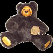 """Robert Raikes """"Cookie"""" #660330 Bear"""