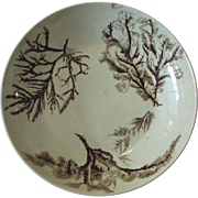 Staffordshire Seaweed pattern Bowl, Josiah Wedgwood and Sons England 1883