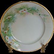 MZ Austria Handpainted Daisy Porcelain Plate c1900
