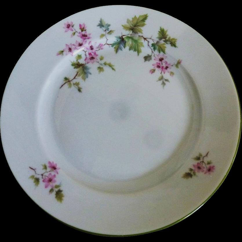 Vintage Magnolia Desert Plate set of 8 by Hutschenruether Selb