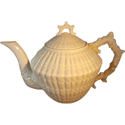Irish Belleek Limpet Tea Pot