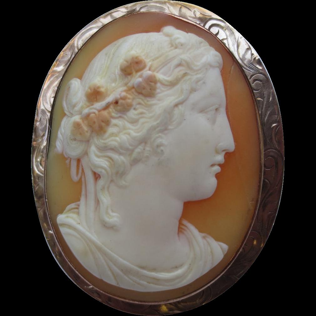 Fine 14k Gold Edwardian Cameo Engraved Shell Brooch
