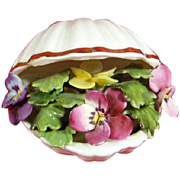 Royal Adderley Floral Shell