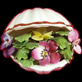 Royal Adderley Floral Shell