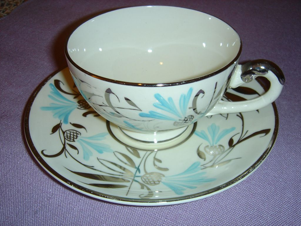Myott Hand Painted Cup and Saucer Made in England