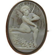 Edwardian Shell Cameo in 9 KT Gold setting – Pendant and Brooch – Eros – Cupid.