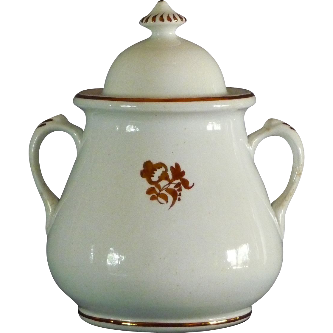 "Ironstone ""Morning Glory"" Design Covered Sugar Bowl"
