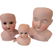 3 Bisque Doll Heads for TLC