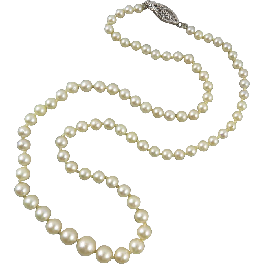 14K Graduated Akoya Cultured Pearl Necklace 18.5""