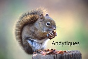 Andytiques