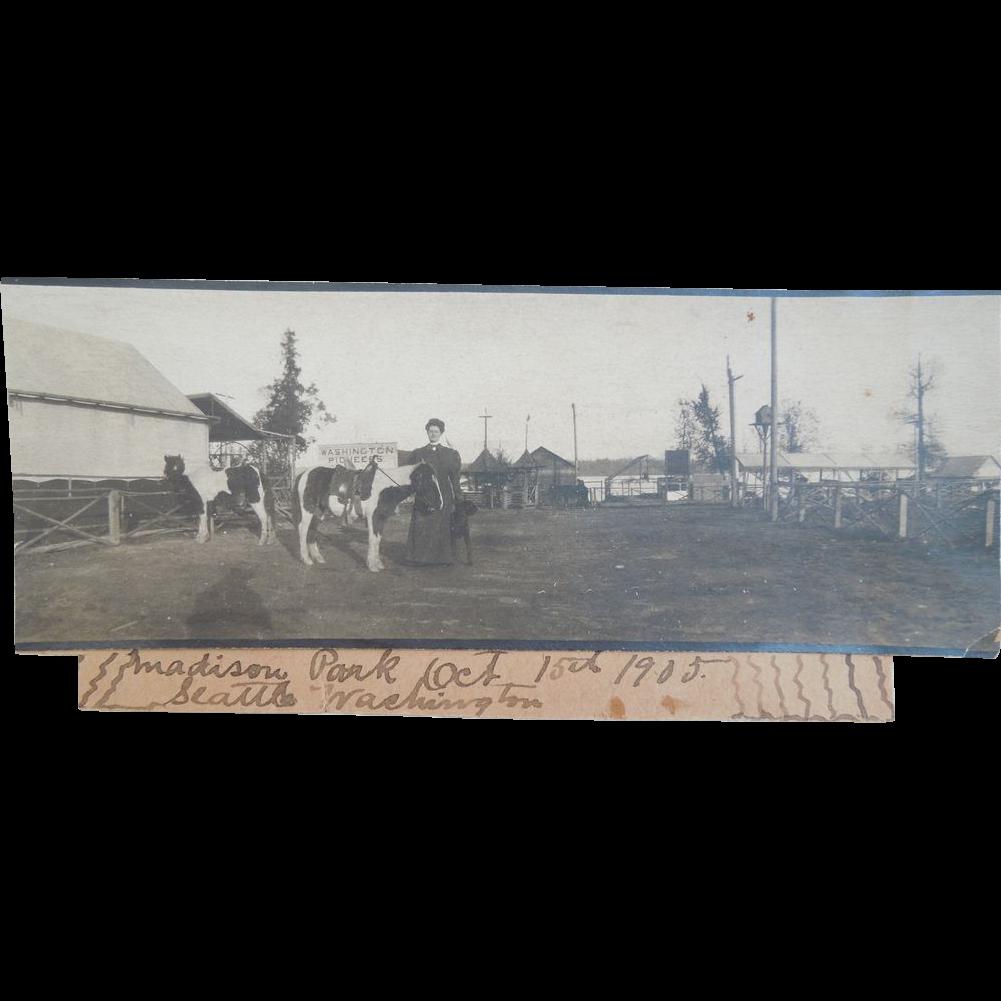 Photograph Of Madison Park, Seattle, Washington Dated 1905